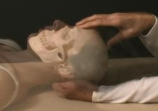Cranial-Sacral Therapy DVD